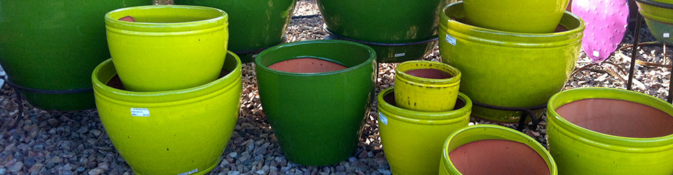 green-pot-header